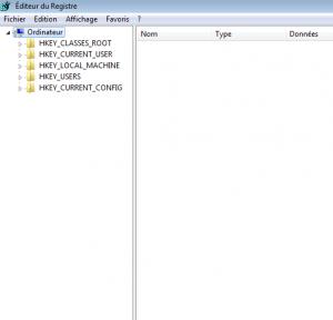 l'éditeur de registre de windows 7 (je n'avais pas de PC avec XP sous la main)